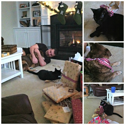 Pets Christmas collage